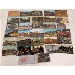 Collection of Calif Logging Postcards  [122393]