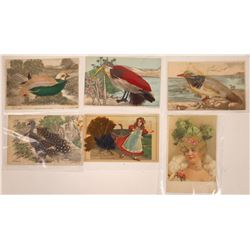 Feather Postcards Including One with Hair (6)  [118795]