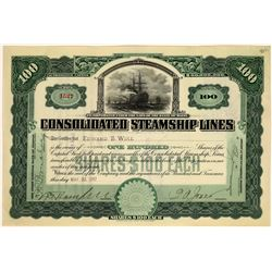 Consolidated Steamship Lines Stock Certificate, 1907  [128598]