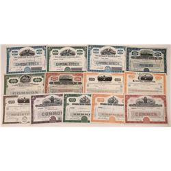 Group of Shipping Company Stock Certificates (13)  [128625]