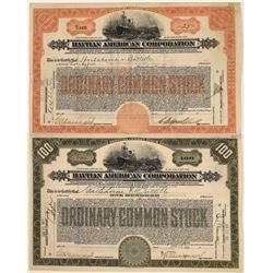 Haytian American Corporation Stock Certificates (2)  [128639]