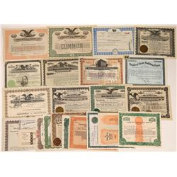 Charity Organization Stock Certificate Collection  [127892]