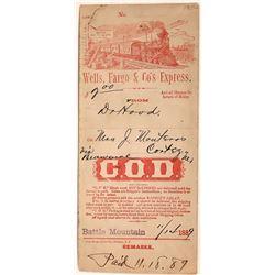 Wells Fargo COD Collection Envelope  [127945]