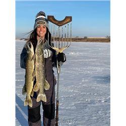 North Dakota Spearfishing for Pike