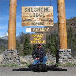 Wyoming Spring Black Bear Hunt