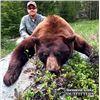Image 2 : Wyoming Spring Black Bear Hunt