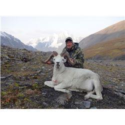 10-Day Alaska Dall Sheep Hunt