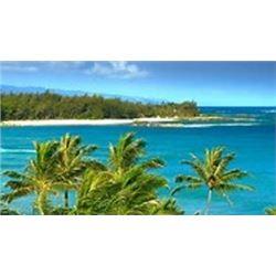 Hawaiian Islands Condo