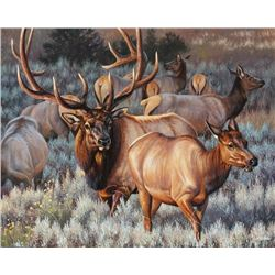 """ROYAL ESCORT"" Framed Original 20X28 Elk by Montana's Own Cynthie Fisher"