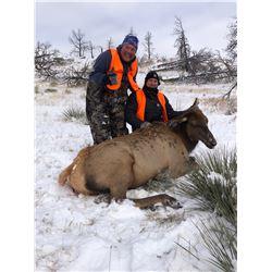 Montana – Flying Arrow Ranch - 4 Cow Elk for 4 Hunters