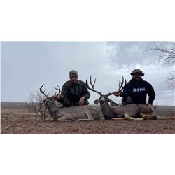 Fully Guided Mule Deer and Coues Deer Combo Hunt for 1 Hunter in Mexico