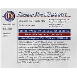 ELLINGSON RIDER PRIDE 0213