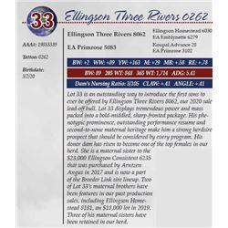 ELLINGSON THREE RIVERS 0262