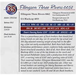 ELLINGSON THREE RIVERS 0052