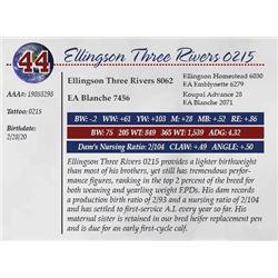 ELLINGSON THREE RIVERS 0215