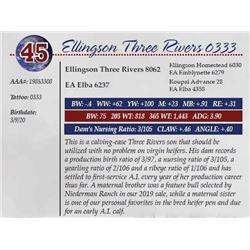 ELLINGSON THREE RIVERS 0333