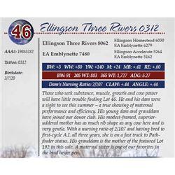 ELLINGSON THREE RIVERS 0312