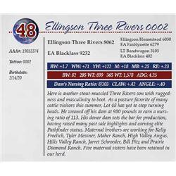 ELLINGSON THREE RIVERS 0002