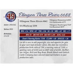 ELLINGSON THREE RIVERS 0088