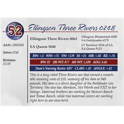 ELLINGSON THREE RIVERS 0248