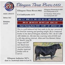 ELLINGSON THREE RIVERS 0461