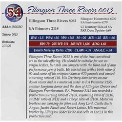 ELLINGSON THREE RIVERS 0013