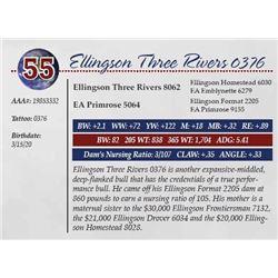 ELLINGSON THREE RIVERS 0376