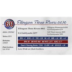 ELLINGSON THREE RIVERS 0070