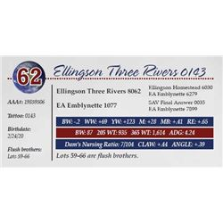 ELLINGSON THREE RIVERS 0143