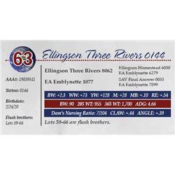 ELLINGSON THREE RIVERS 0144