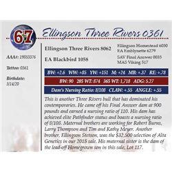 ELLINGSON THREE RIVERS 0361