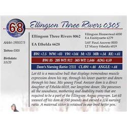 ELLINGSON THREE RIVERS 0305