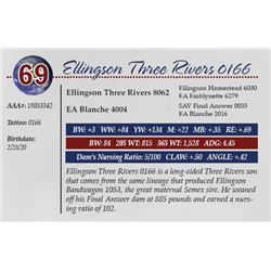 ELLINGSON THREE RIVERS 0166