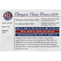 ELLINGSON THREE RIVERS 0259