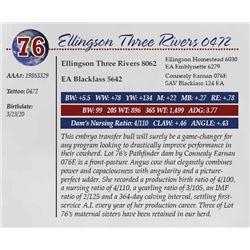 ELLINGSON THREE RIVERS 0472