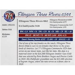 ELLINGSON THREE RIVERS 0544