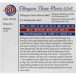 ELLINGSON THREE RIVERS 0316