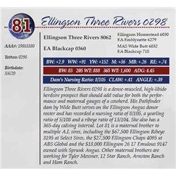 ELLINGSON THREE RIVERS 0298
