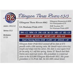 ELLINGSON THREE RIVERS 0313