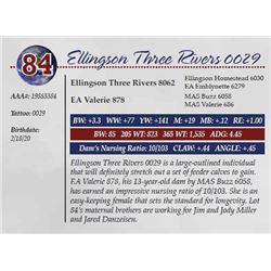 ELLINGSON THREE RIVERS 0029