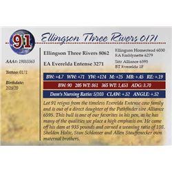 ELLINGSON THREE RIVERS 0171