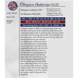 ELLINGSON AUTHORIZE 0033