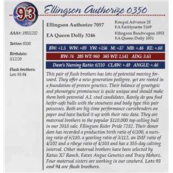 ELLINGSON AUTHORIZE 0350