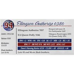 ELLINGSON AUTHORIZE 0380
