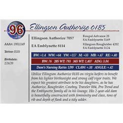 ELLINGSON AUTHORIZE 0185