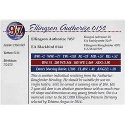 ELLINGSON AUTHORIZE 0154