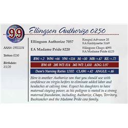 ELLINGSON AUTHORIZE 0250