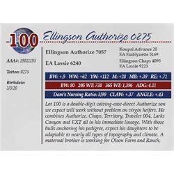 ELLINGSON AUTHORIZE 0275