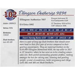 ELLINGSON AUTHORIZE 9894