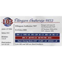 ELLINGSON AUTHORIZE 9853